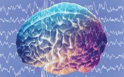 Невероятни факти за мозъка, които със сигурност не знаете
