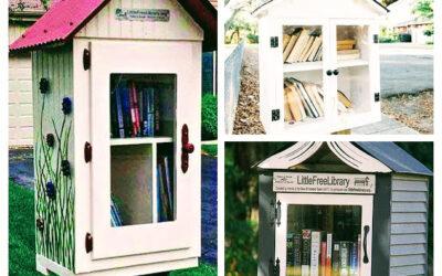 Къщичка за книги в Етрополе